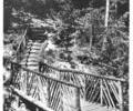 Rustic bridge, Branksome Chine