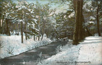 AH_Branksome_Chine_Under_Snow